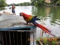 costa rica nicaragua 593.jpg
