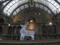 Antwerpen - 22 december 2013 016.JPG